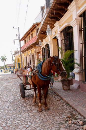 Cuba, Trinidad, charrette à cheval