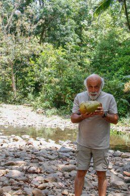 Déguster quelques noix de coco offertes par des forestiers ...